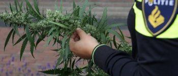 Heerenveen – Zeven arrestaties in onderzoek drugshandel